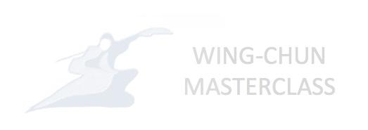 WING-CHUN Masterclass